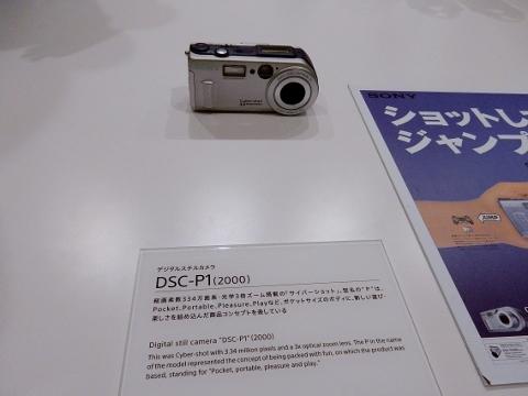DSCN9998 (480x360).jpg