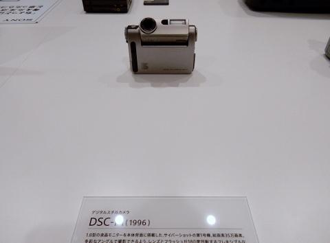DSCN9992 (480x354).jpg