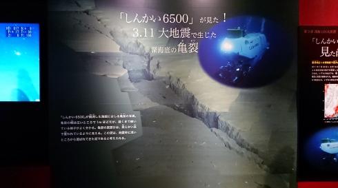 DSC_0245 (490x273).jpg